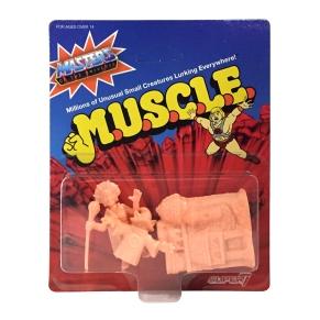 motu_muscle_wv2_d